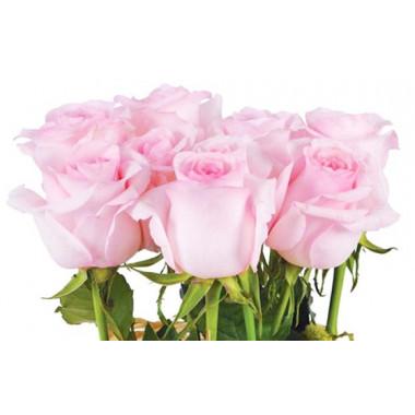 vue sur le fagot de roses roses