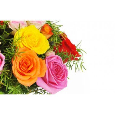 zoom sur trois roses gros boutons jaune, orange, rose