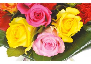 zoom sur quatre roses jaune, rose & fuchsia