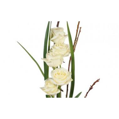 vue sur cinq roses blanches du bouquet de roses colombe