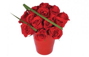 image du bouquet de roses rouges en pot Grenade