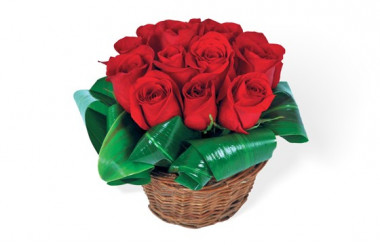 Bouquet de roses rouges Brazilia