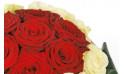 zoom sur le haut du bouquet rond