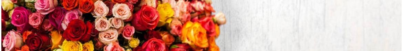 Livraison de Roses |Bouquet & Compo réalisés par un artisan Fleuriste