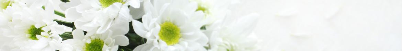 Livraison de compositions et coupes de plantes pour un deuil