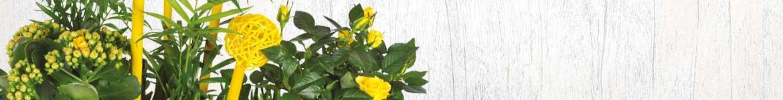 Livraison de plantes par un artisan fleuriste 7j/7 en 4h