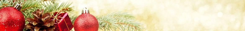 Sapins, compositions, bouquets, plantes de Noël livrés par un fleuiste