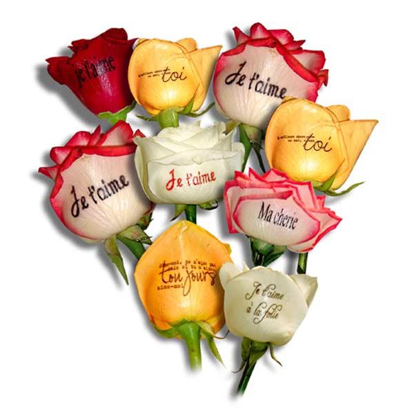 Bouquet de roses imprimées