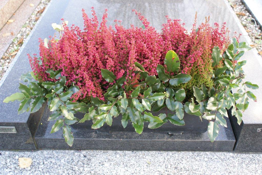 Livrer plante sur tombe livraison de fleurs deuil jardin for Jardin lee menu livraison