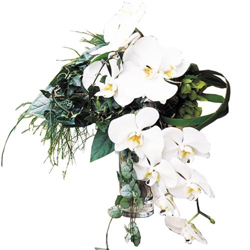 Livraison domicile fleurs de saison for Livraison bouquet de fleurs a domicile