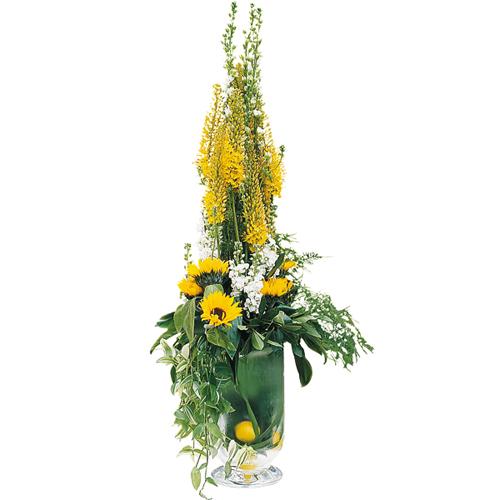 Livrer fleur livraison fleurs onyx for Livrer des fleurs demain