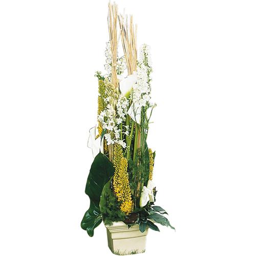 livraison de bouquet de fleurs livraison de fleurs opale. Black Bedroom Furniture Sets. Home Design Ideas