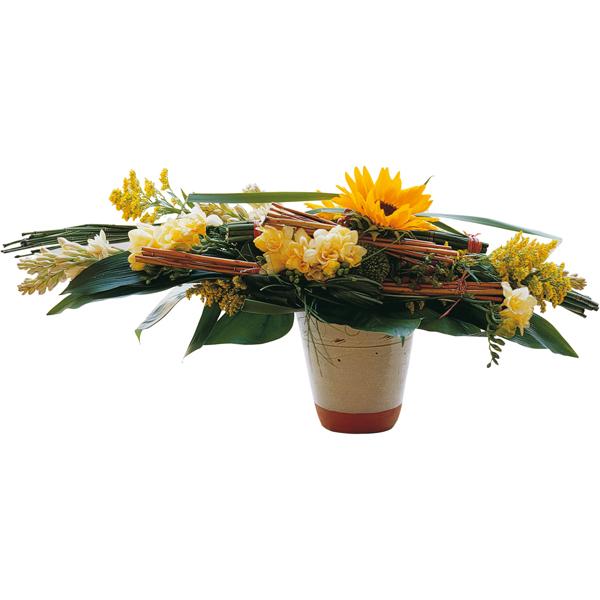 Envoi bouquet fleurs express livraison fleurs oeil de tigre for Envoi bouquet