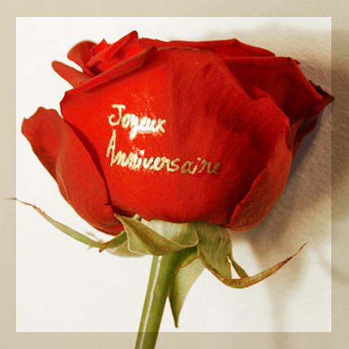 Rose rouge inscription joyeux anniversaire dor for Bouquet de fleurs pour une naissance
