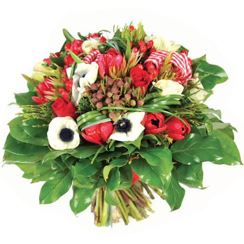 Bouquet de tulipes rouges images for Livraison tulipes