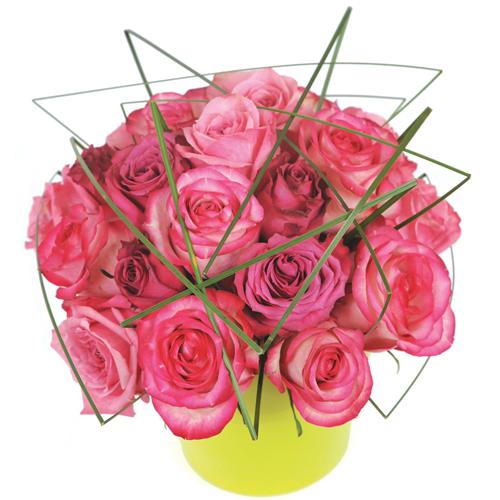 Envoyez lui une coposition de roses roses for Livrer une rose