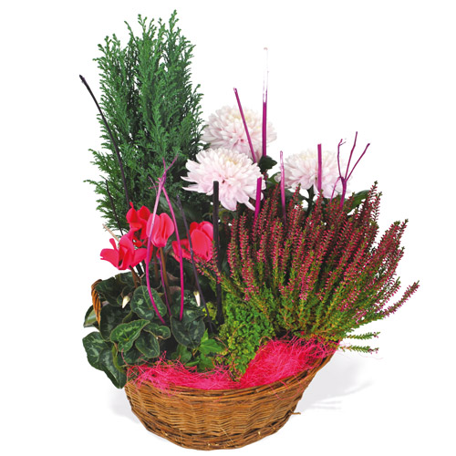 livraison de plantes pour un deuil 7j/7 en 4h