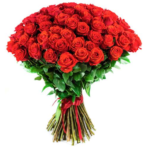 commandez ces magnifiques roses rouges longues tiges rose rouge