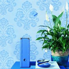 Les plantes d polluantes - Les plantes depolluantes purifier l air de la maison ...