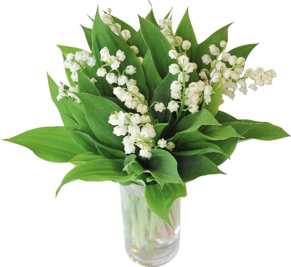 Livraison de fleurs envoi de bouquets en france for Livrer une rose